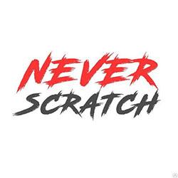 Защита лобового стекла от сколов Never Scratch WPF