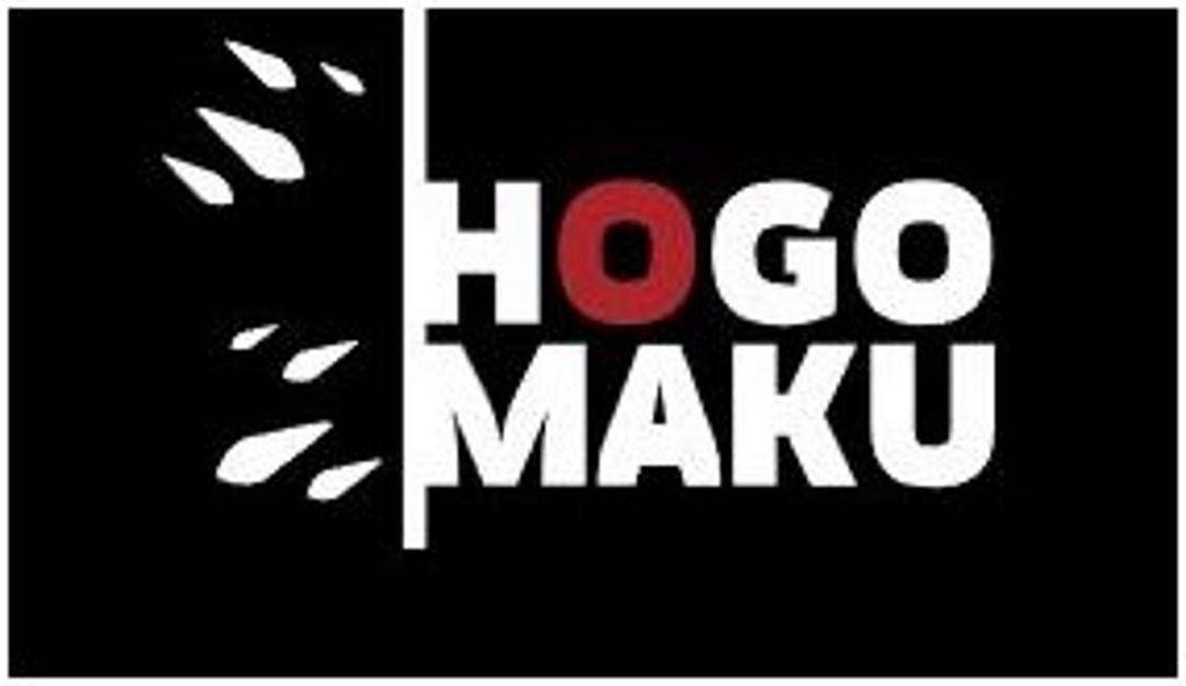 Особенности антигравийной защитной плёнки Hogomaku PRO